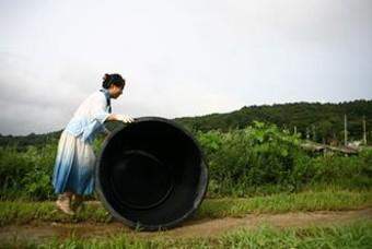 천연염료 '쪽'을 만드는 농사