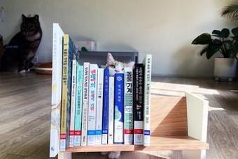 알아보는 추천 어린이 도서 5권
