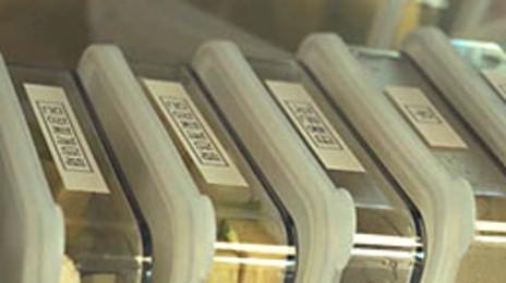 냉동실 정리법과 용기의 장단점 #수납정리