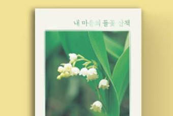 사계절 동안 만난 들꽃들, 그 반짝이는 식물 이야기