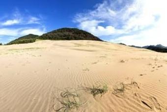 이곳은 사하라 사막인가... 해외 같은 국내 풍경맛집 4선