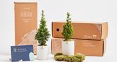 해피빈 공감가게 미세먼지 먹는 나무 숲을 만드는 반려나무 한 그루 입양하세요!