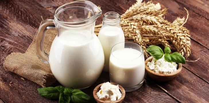 우유 남아도는데 가격은 세계 최고 수준, 왜 이럴까?